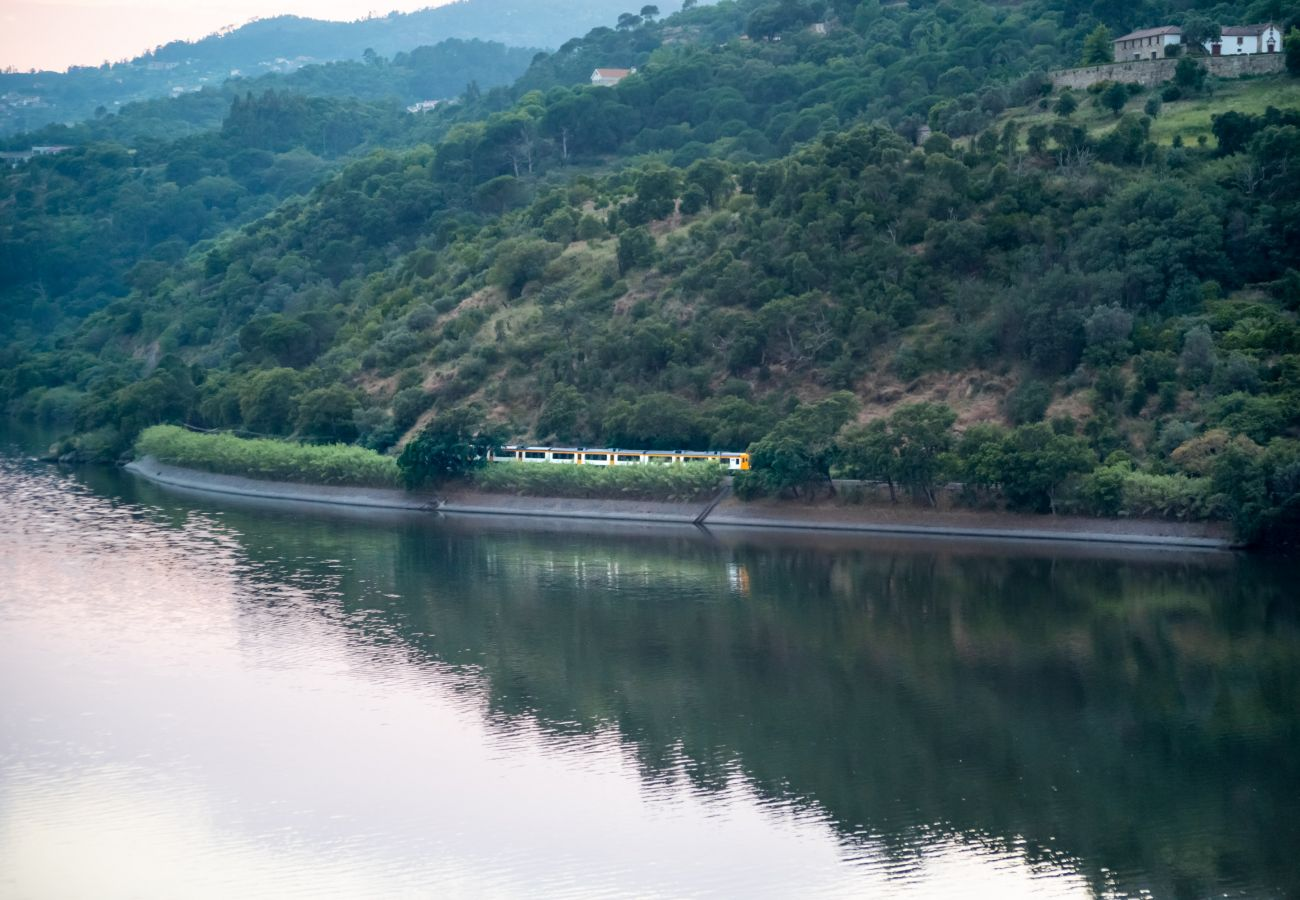 Villa em Resende - Feel Discovery Douro Cherry