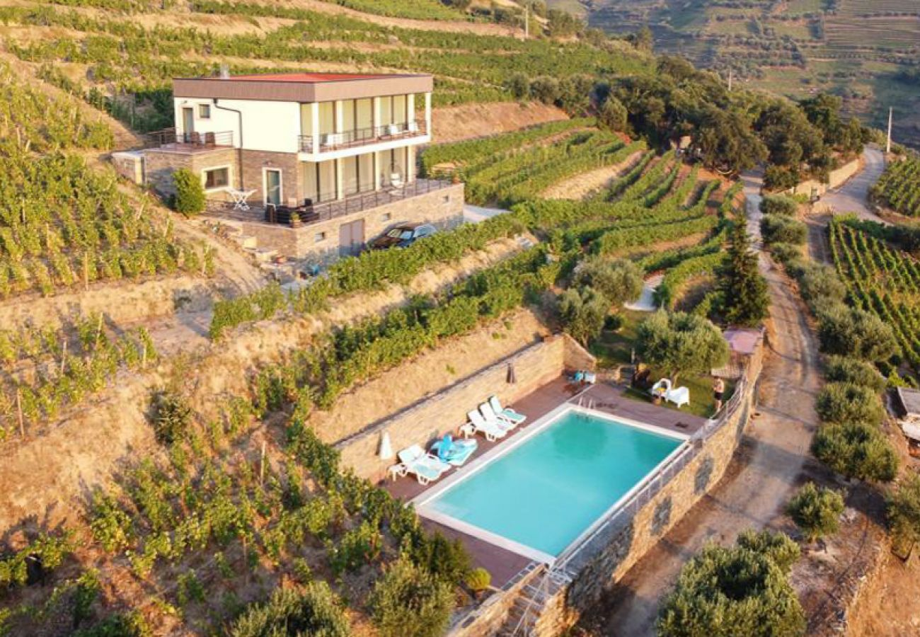 Villa em Folgosa - Feel Discovery Alvim's Douro