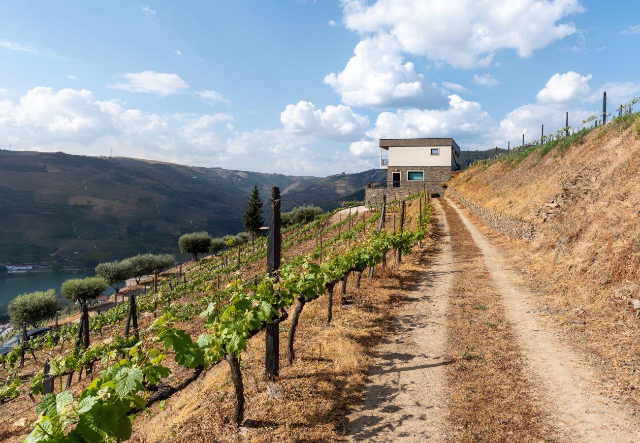 Villa en Folgosa - Feel Discovery Alvim's Douro